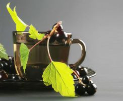b_300_200_16777215_00_images_statii_recipe_black_currant_tea_l.jpg