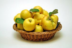 b_300_200_16777215_00_images_statii_recipe_quince-tea_l.jpg